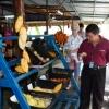 PENANG - LOCAL FRUITS