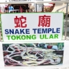 SNAKE TEMPLE SIGN